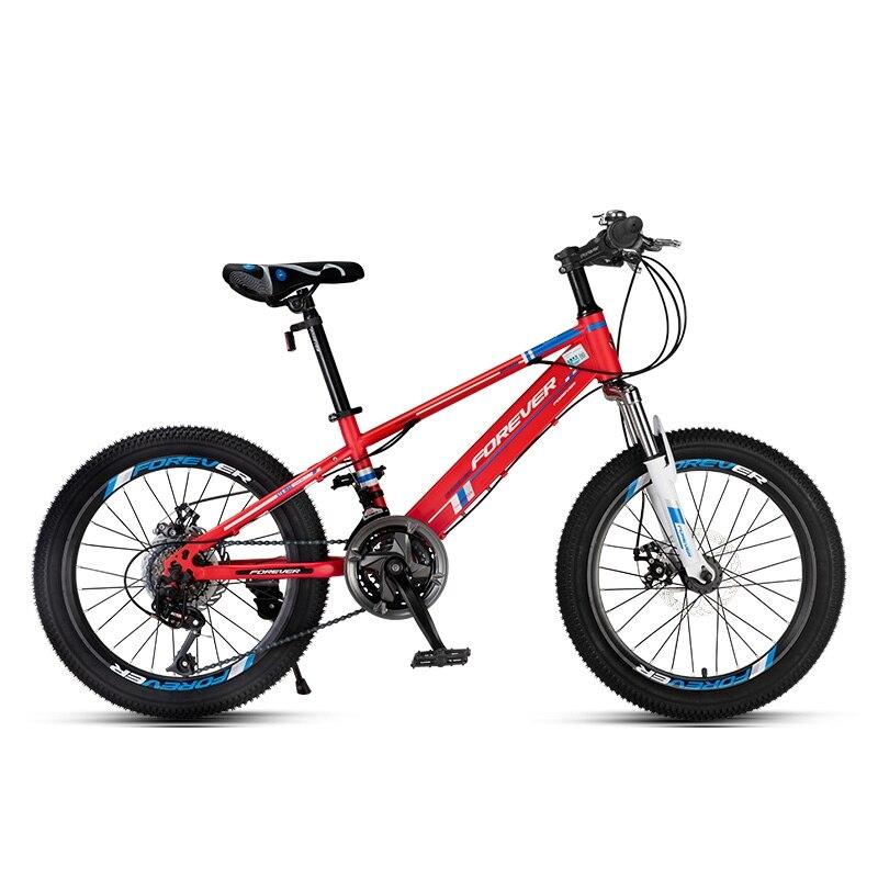 Overload High Carbon Steel 20 InchJunior Mountain Bike 21 SpeedChangeDouble Disc Brake