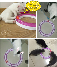 Free Shipping Kitty Cat Dog Pet Baby Track New Pet Supplies Shops For Pet Ball Amusement