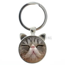 Latest fashion Tsundere Cat key chain ring holder vintage cute funny Frown Cat glass metal keychain keyring for men women CN806 недорого
