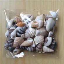 Happykiss lote de engraçado mar misturado conchas concha artesanato aquário decoração náutica ornamentos naturais mini concha mediterrâneo