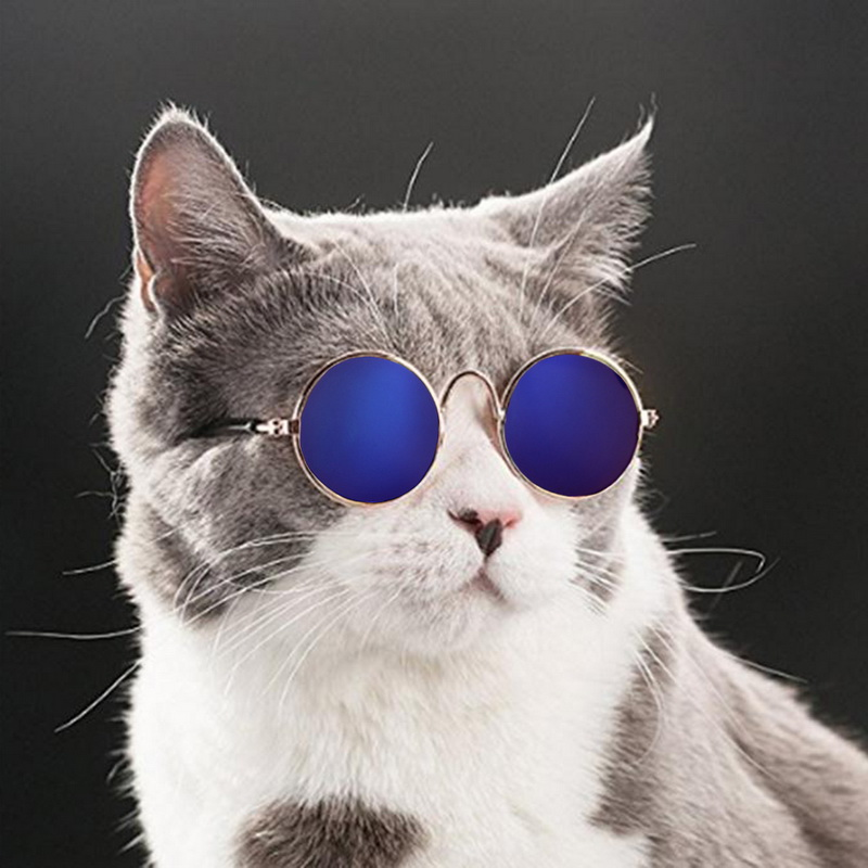 Hoomall 1pc Lovely Pet Cat Glasses Dog Glasses Pet Products For Little Dog Cat Eye-wear Dog Sunglasses Photos Pet Accessoires