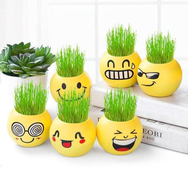 Sale 1PC Plastic Grass Planting Home Decoration  Expression Emoji Cute DIY Microlandschaft MINI Pot Culture Decoration