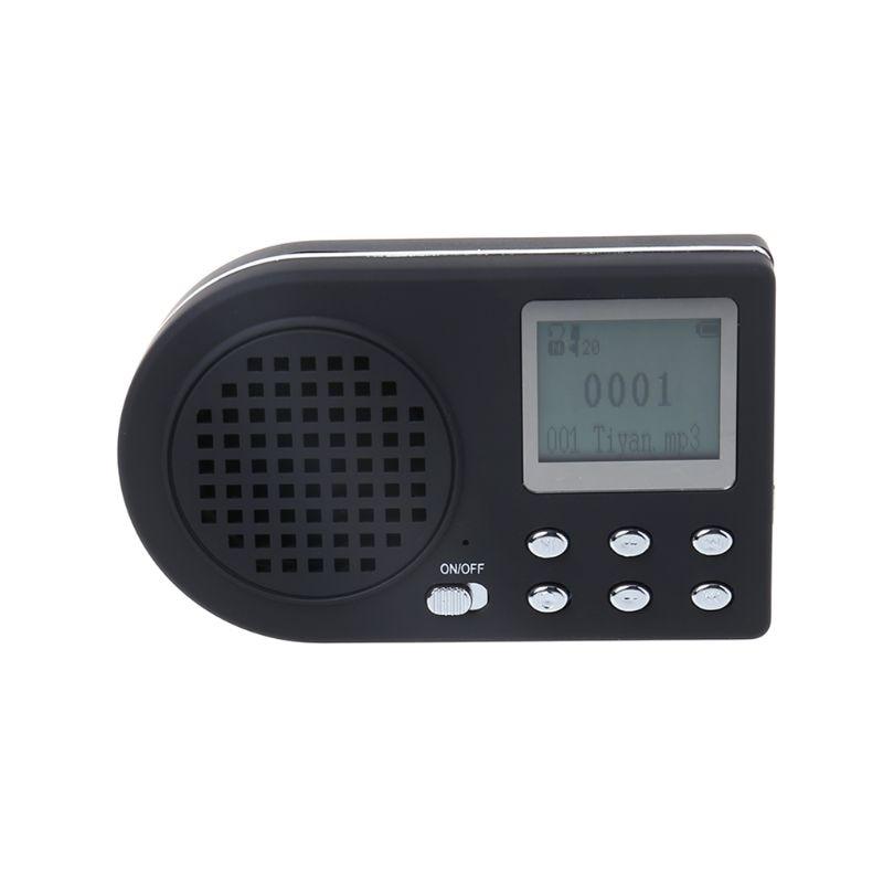 canto amplificador sem controle remoto