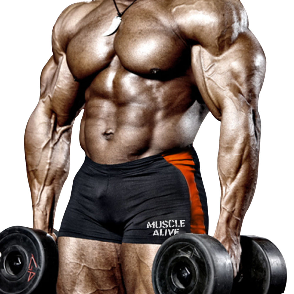 Mens פיתוח גוף גופיות גופיות מכנסיים - בגדי גברים