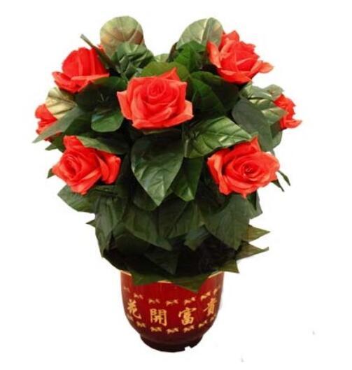 Floraison Rose Bush-télécommande (10 fleurs, Version batterie) tours de magie fleur apparaissant scène fête mariage accessoires comédie