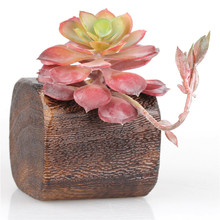 Wood Succulent Pots Planters with One Hole Decorative Windowsill Plant Container