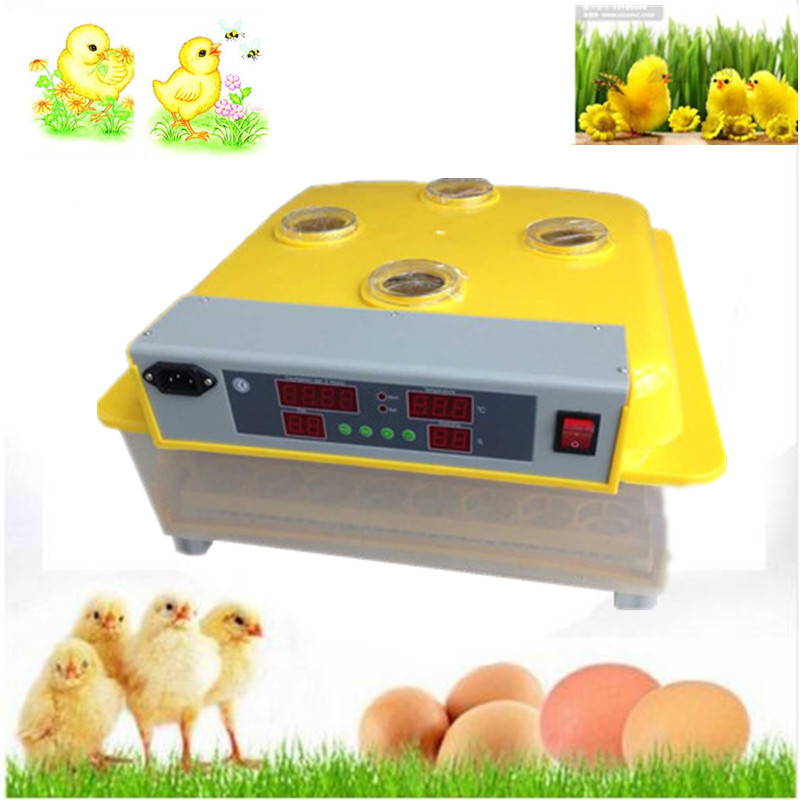 48 eggs incubator home use automatic egg incubator for quail goose duck chicken brooder small auto hatcher incubator full automatic egg hatcher machine for chicken duck pigeons quail parrot turtle bird incubation