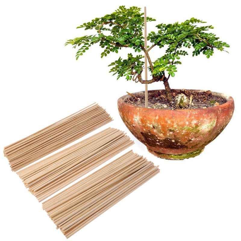 50 plantas de madera soporte de cultivo de plantas de bambú palos de jardín bastones plantas de soporte de flores caña