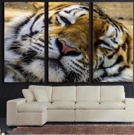 3 Pieces Cool Multi Color Tiger Oil Paintings On Canvas Cheap Price Unframed Wall Hanging Vivid Animal Print Picture Home Decor