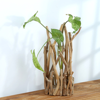 2PCS Glass Vase Tube Shape Clear Flower Bottle with Wooden Shelf Wood Stand Hydroponic Glass Container Home Decor Ornament