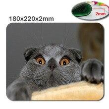 Кошка Под Ковер противоскользящие быстрая игра коврик для мыши печати размер 220*180*2 мм DIY мягкой резины игровой мышь cool mouse pad