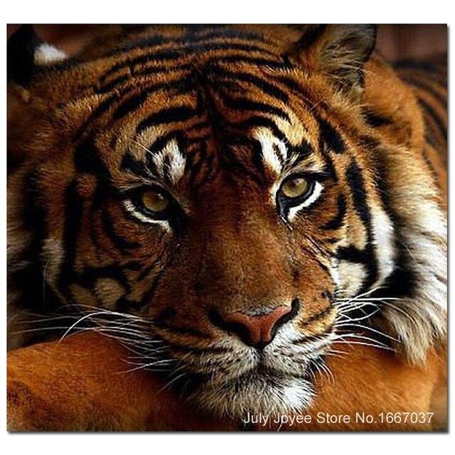 A Sedih Harimau Lukisan Berlian Diy Hewan Rhinestones Gambar