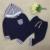 Bebé Floral de la Raya Con Capucha de Chándal Juegos de Los Hoodies Conjuntos Niños Que Arropan Otoño Sudadera de Algodón 2017 Moda C35