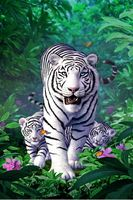 White tiger family The wooden puzzle 1000 pieces ersion  jigsaw puzzle white card adult children's educational toys|Puzzles|   -