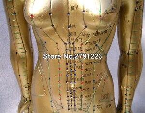 Image 4 - Modèle Meridian modèle dacupuncture humaine pour femme 48cm, 1 pièce