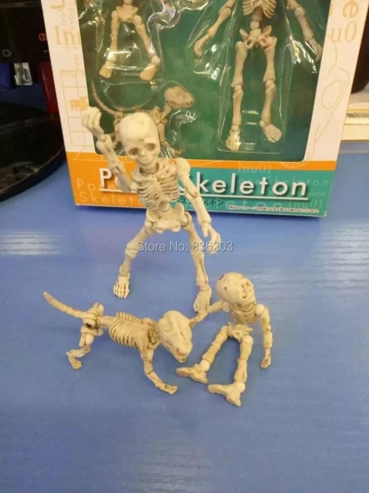 Online-Shop Menschlichen anatomie anatomisches Mr. Knochen Pose ...
