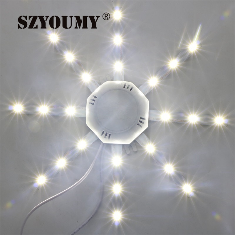 SZYOUMY  5730SMD LED Dome Palate Light Lamp 24LED 12W High Bright Lamp Cold White Lamp Used in Living Room  110V Or 220V