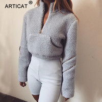 Articat Autumn Winter Long Sleeve Hoodies Women Pullovers Stand Collar Zipper Pocket Slim Sweatshirt Women Casual Cropped Hoodie