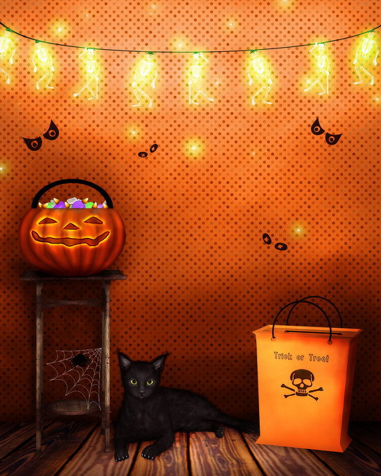 Customized halloween black cat photography backdrops vinyl digital cloth for kids photo studio portrait taking background HA-012
