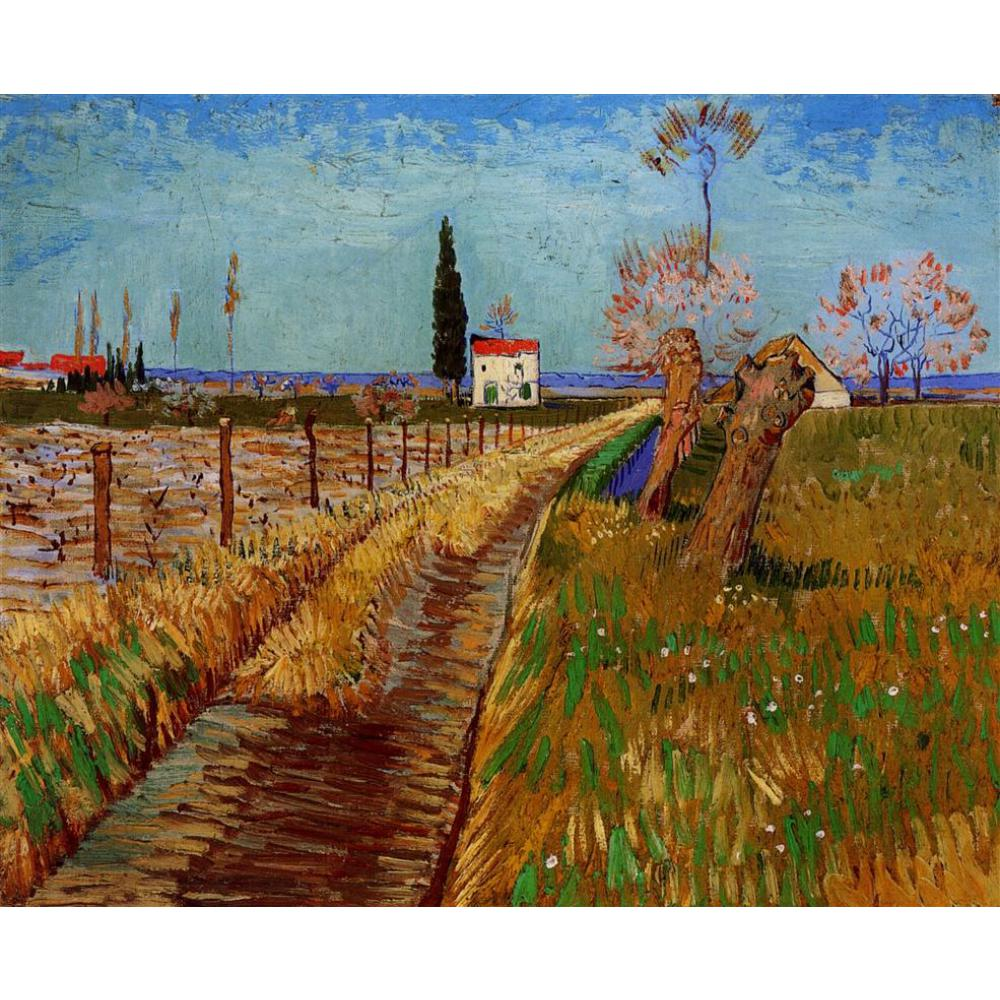 High quality Vincent Van Gogh paintings for sale Path Through a Field with Willows Canvas art hand-paintedHigh quality Vincent Van Gogh paintings for sale Path Through a Field with Willows Canvas art hand-painted