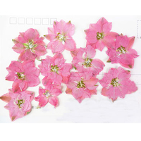 12pcs Per Bag Dyed WHITE Larkspur DIY Pressed Flower Cell Phone Case Press Flower Wholesale