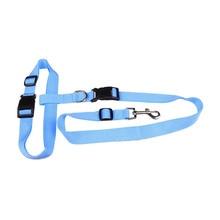 New waist pet dog leash running jogging puppy dog lead collar sport adjustable walking leash candy colors