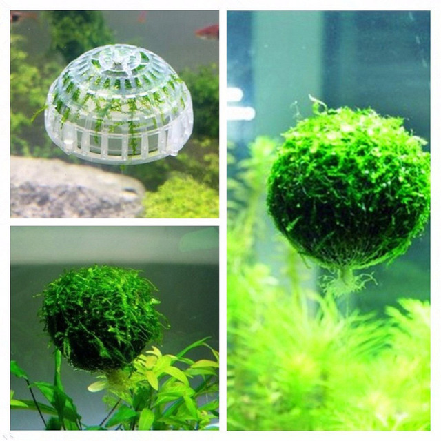 aquarium decoration moss christmas tree ball water plant grow artificial grass plants aquaristics fish tank aquarium