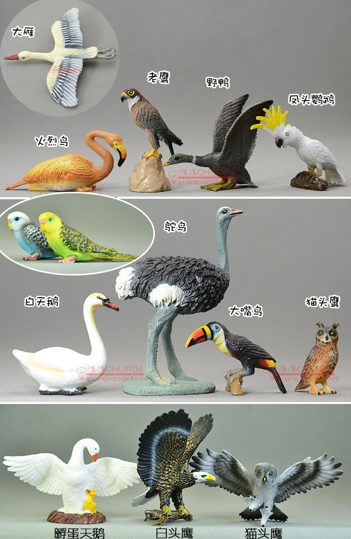 solid pvc figure SimulationThe simulation model toy Swan ostrich pelican flamingo eagle 14pcs/set magnat quantum 1009