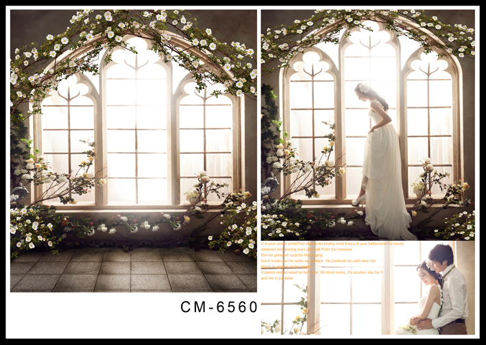 200*300CM(6.5*10FT)Custom Wall Wedding Backdrops Photography Backgrounds Photo Studio Backdrops For Photography Fotografia 300cm 200cm about 10ft 6 5ft backgrounds camera photography photo camera photography backdrops photo lk 1475
