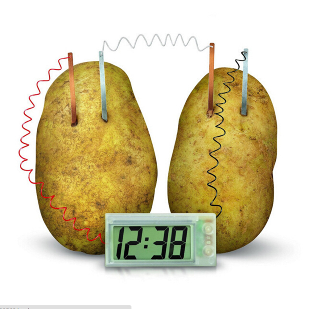 Cute Potato Clock Novel Green Science Project Experiment Kit Lab Home School Toy Funny Educational Children Kids DIY Material