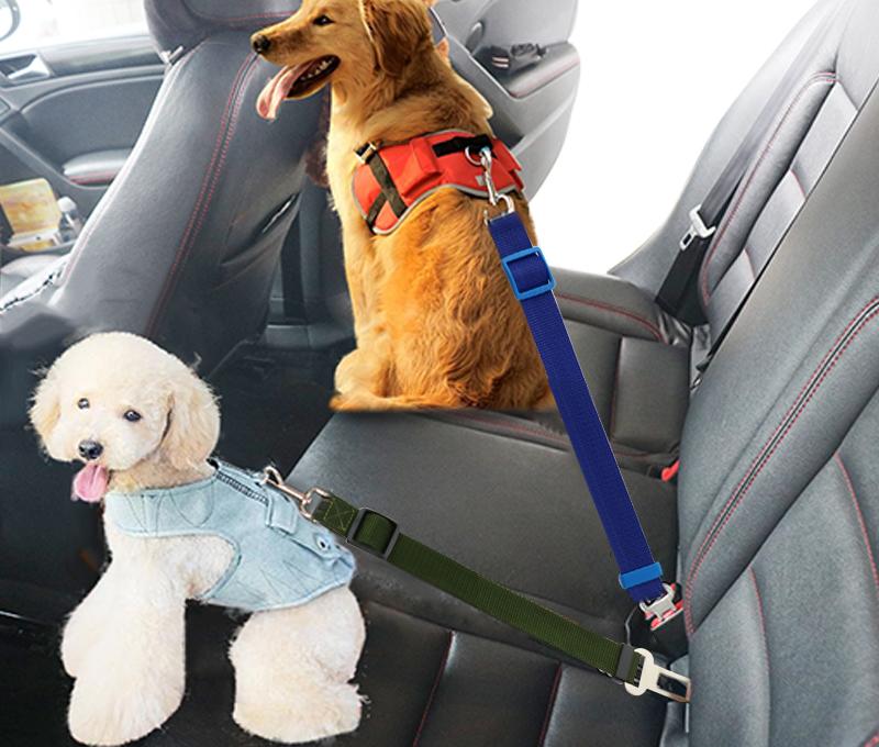 Cinturon de seguridad automovil para perro 10