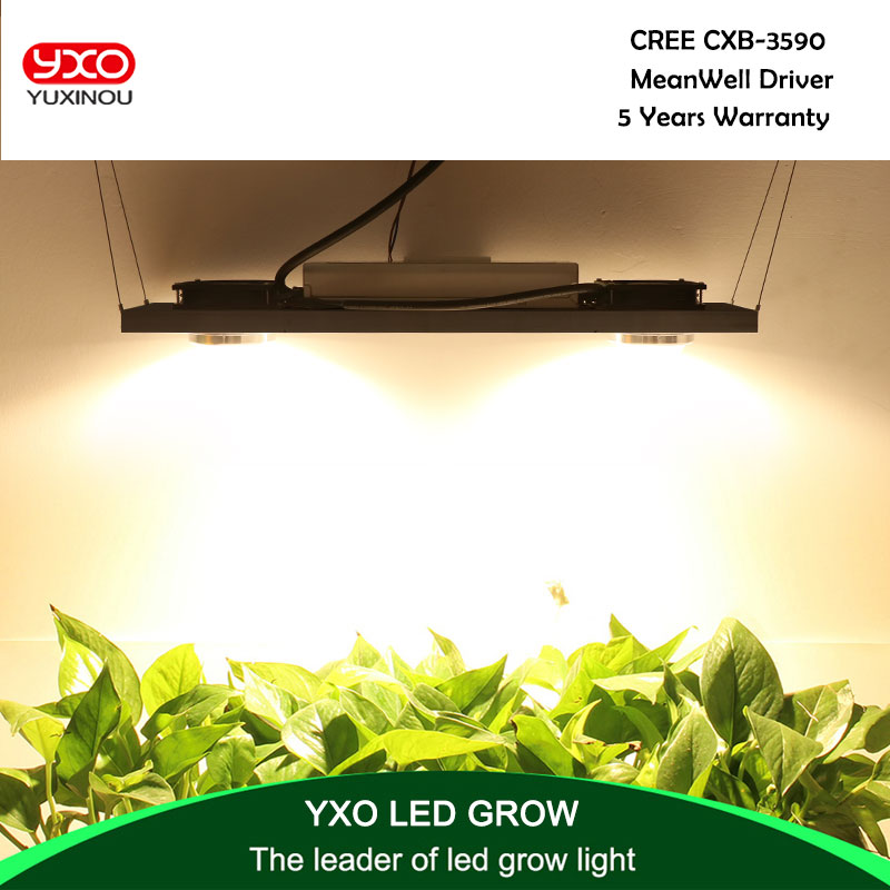 CREE CXB3590 200 w 36000LM 3500 k 5000 k Dimmable COB LED Grow Light Full Spectrum Croissance Lampe Plante D'intérieur croissance Panneau D'éclairage