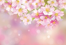 Laeacco Pink Blossom Flowers Polka Dots Light Bokeh Child Baby Pattern Photo Backgrounds Photography Backdrops Studio