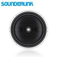 1 предмет Sounderlink Top high end мощность 6,5 дюймов 350 Вт автомобильный сабвуфер аудио сырья водитель громкоговоритель