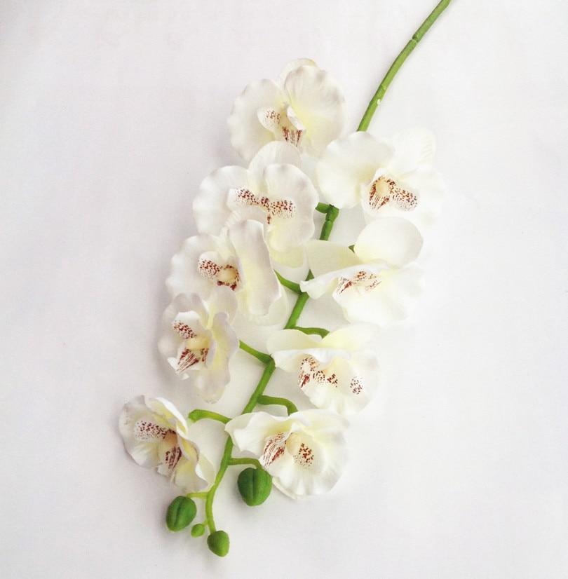 난초 Phalaenopsis 10 머리 크림 / 오렌지 / 핫 핑크 / 자홍색 / 밝은 보라색 결혼식을위한 난초 Pasrty Aritificial 장식적인 꽃