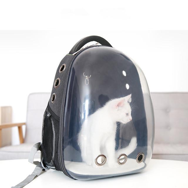 Cat's Transparent Backpack Design Carrier