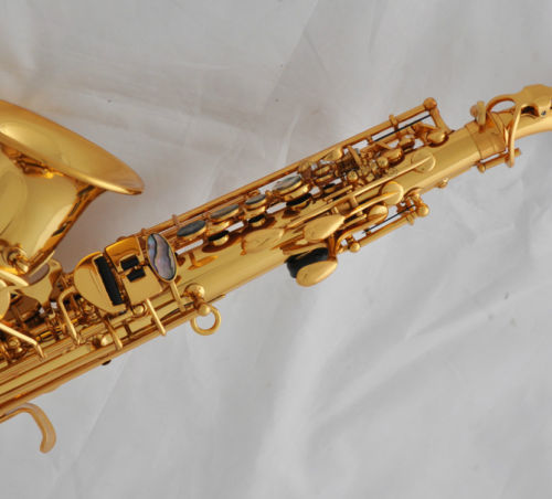 Professional TaiShan Gold Curved Soprano Saxophone Abalone