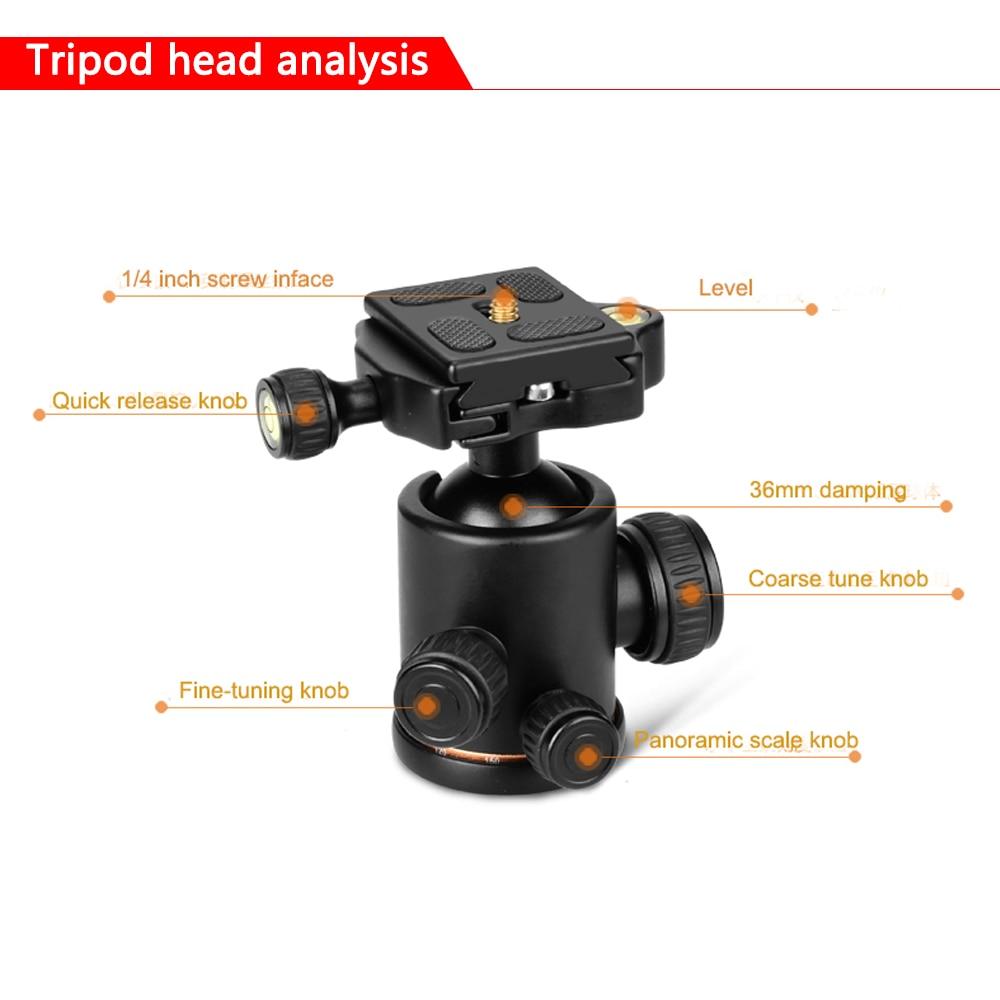 Spash Q999H Portable Camera Tripod Monopod Professional Folding Travel Tripod Stand Monopod For DSLR Camera Quick Release Plate