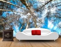 Benutzerdefinierte decke tapete wandmalereien, white birch fantasie landschaft für das wohnzimmer fernseheinstellungswand wasserdicht papel de parede