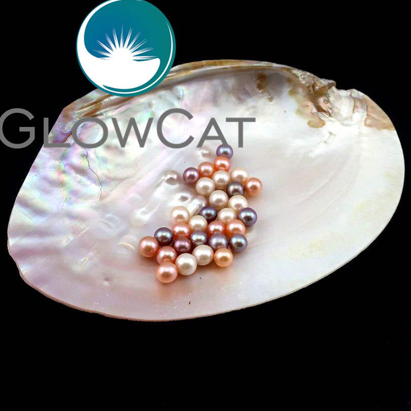 GLOWCAT 6pcs AAA Round Natural Pearls for Oysters,Top Quality 8mm Pearls Beads fit Women Earring Locket Pendant Necklace Making