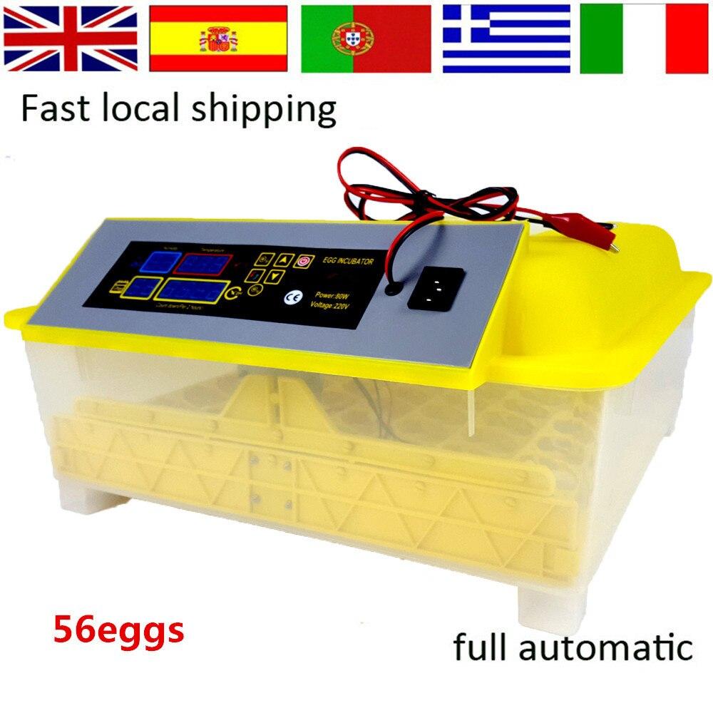 56 eggs  Incubator Automatic  Incubator mini incubator chicken incubator 12+220V  цены