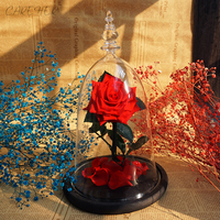 2019 newest forever rose in glass the beauty and the beasts red eternal rose flowers women valentine's romantic gifts home decor