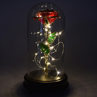 UBUY 24K Gold Red Rose Flower In Glass Dome and LED Lights Decor on Wooden Base for Home Display Wedding Anniversary