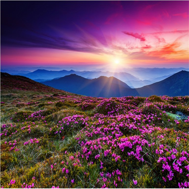Hd 1600x900 Wallpaper: Beibehang Large Custom Wallpaper Sunset Flowers Romantic