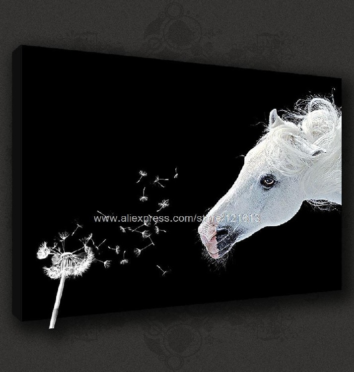 White horse dandelion stunning canvas pop art many to for Black white canvas paintings