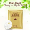 2Pcs Snail Extract Essence Face Mask Fade Dark Spots Face Skin Care Moisturizing Whitening Blackhead Remover Acne Treatment