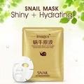 2Pcs Snail Extract Essence Face Mask Fade Dark Spots Face Skin Care Moisturizing Whitening Blackhead Remover Acne Treatment