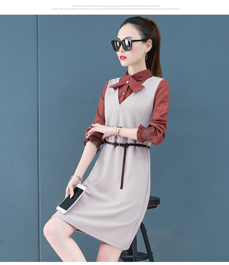 Render a dress in female new spring in the spring and autumn qiu dong fake two piece suit dress long 17