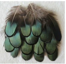 New Arrival! 500pcs/Lot 5-7CM LOOSE  DARK GREEN AMHERST PHEASANT FEATHERS freeshipping