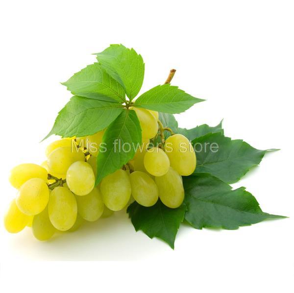 Aliexpresscom Buy 50 Mixed Grape Seeds Vitis Vinifera Delicious